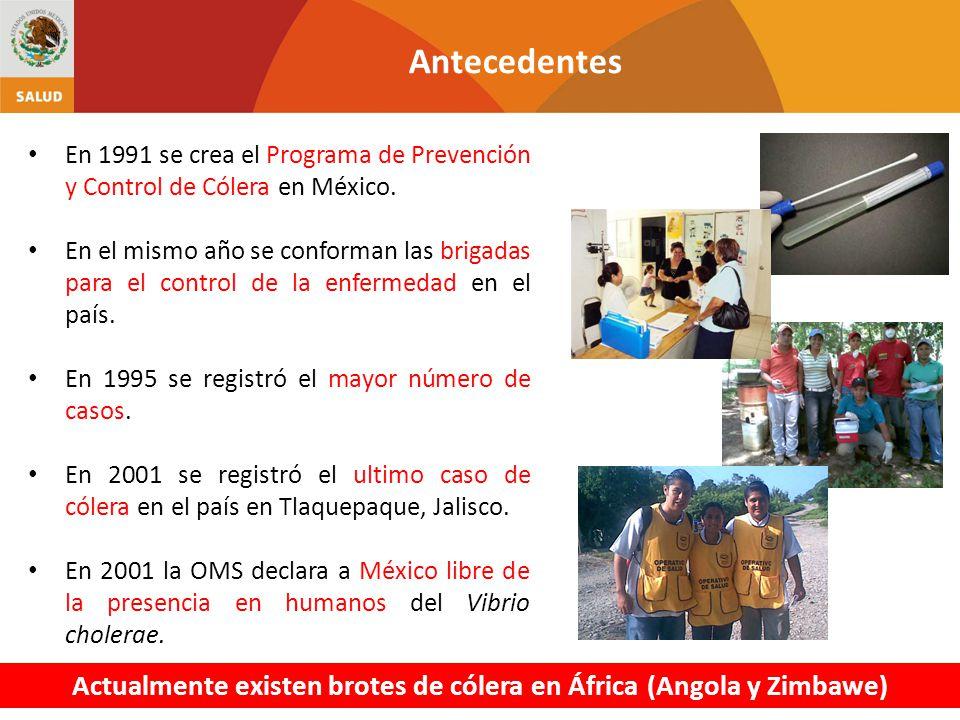Actualmente existen brotes de cólera en África (Angola y Zimbawe)