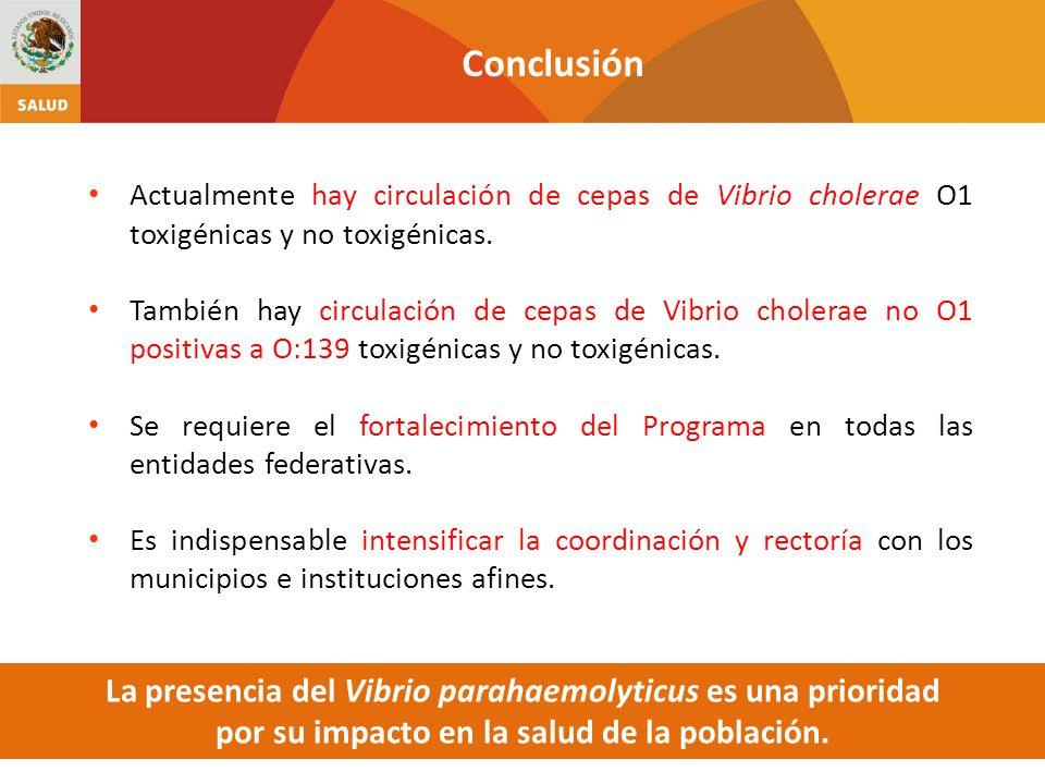 Conclusión Actualmente hay circulación de cepas de Vibrio cholerae O1 toxigénicas y no toxigénicas.