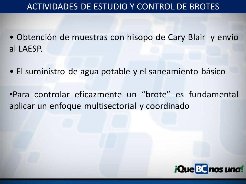 ACTIVIDADES DE ESTUDIO Y CONTROL DE BROTES