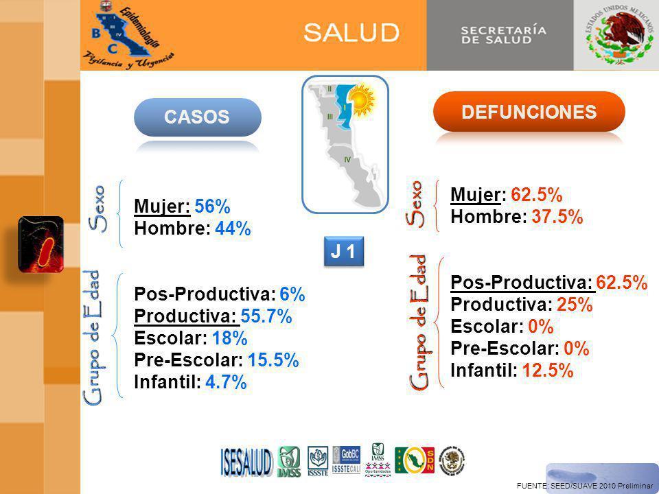 ISESALUD DEFUNCIONES CASOS Sexo Mujer: 62.5% Hombre: 37.5%