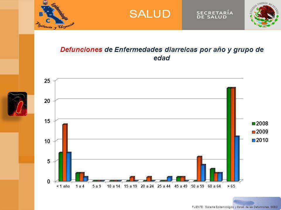 Defunciones de Enfermedades diarreicas por año y grupo de edad