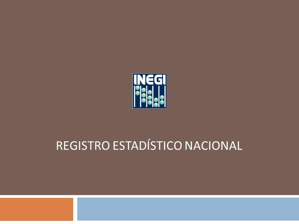 REGISTRO ESTADÍSTICO NACIONAL