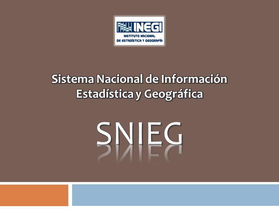 Sistema Nacional de Información Estadística y Geográfica