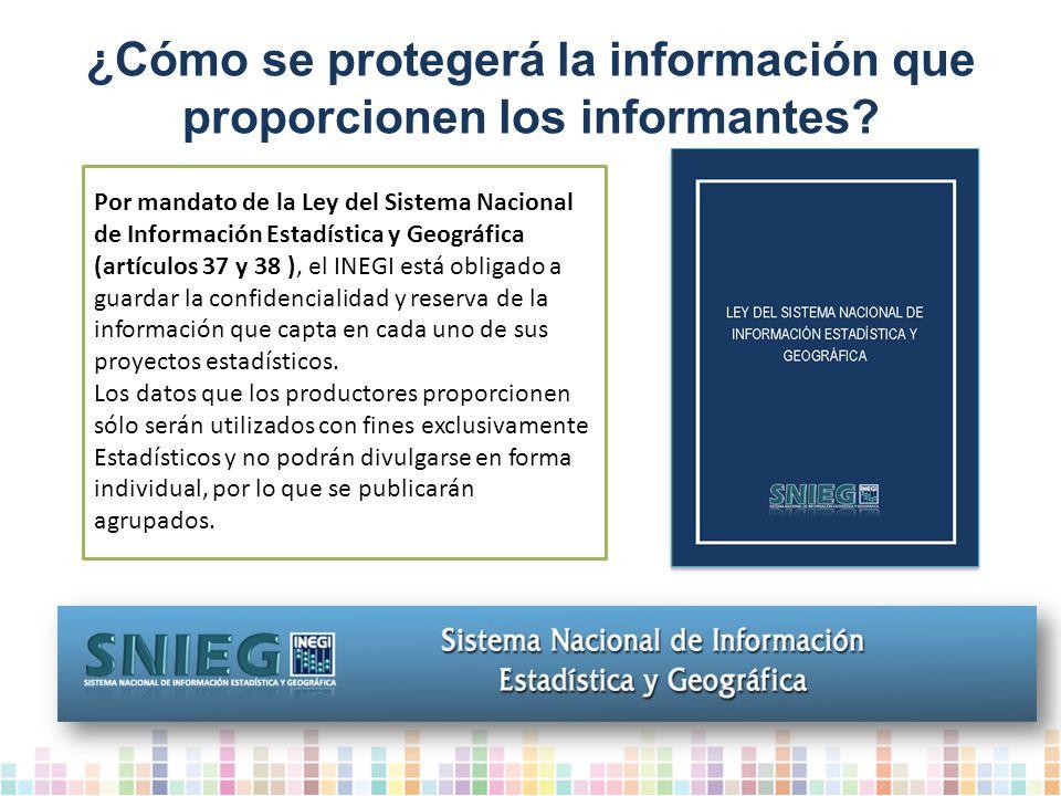 ¿Cómo se protegerá la información que proporcionen los informantes
