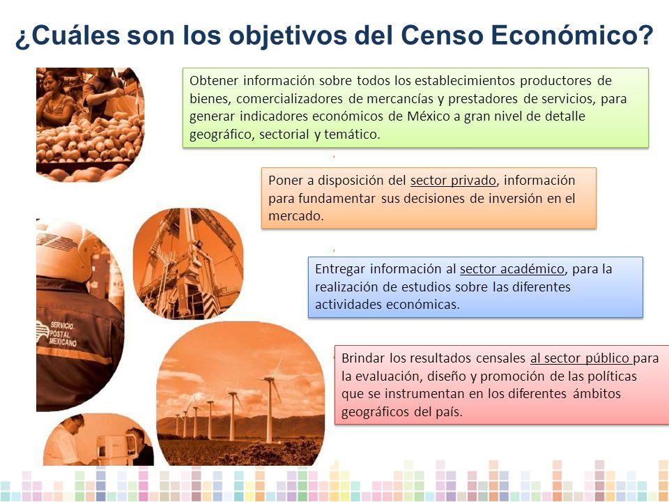 ¿Cuáles son los objetivos del Censo Económico