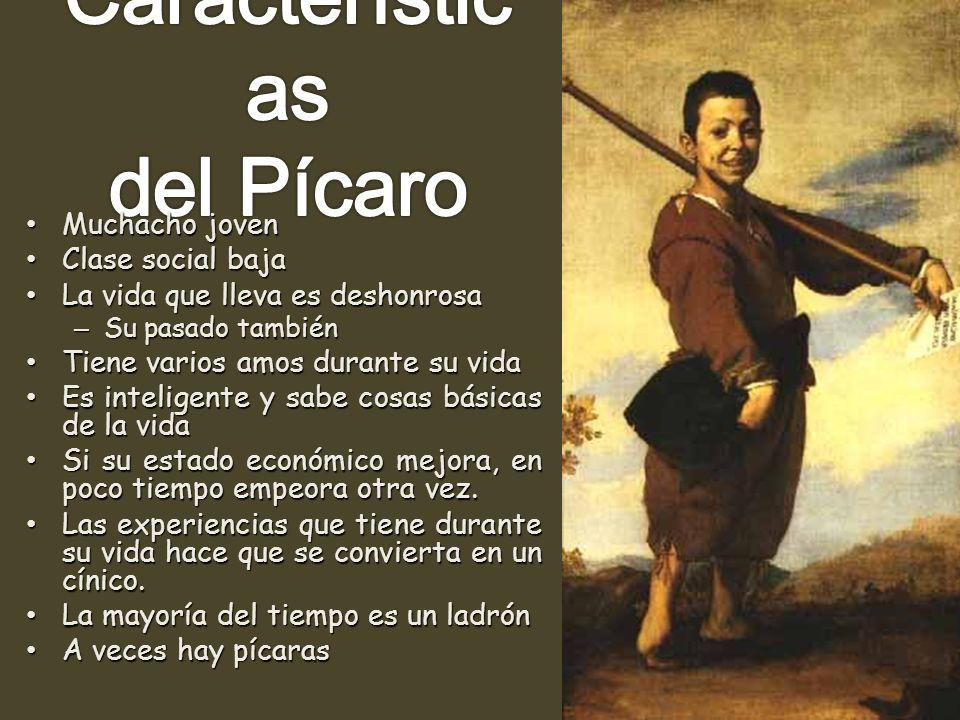 Características del Pícaro