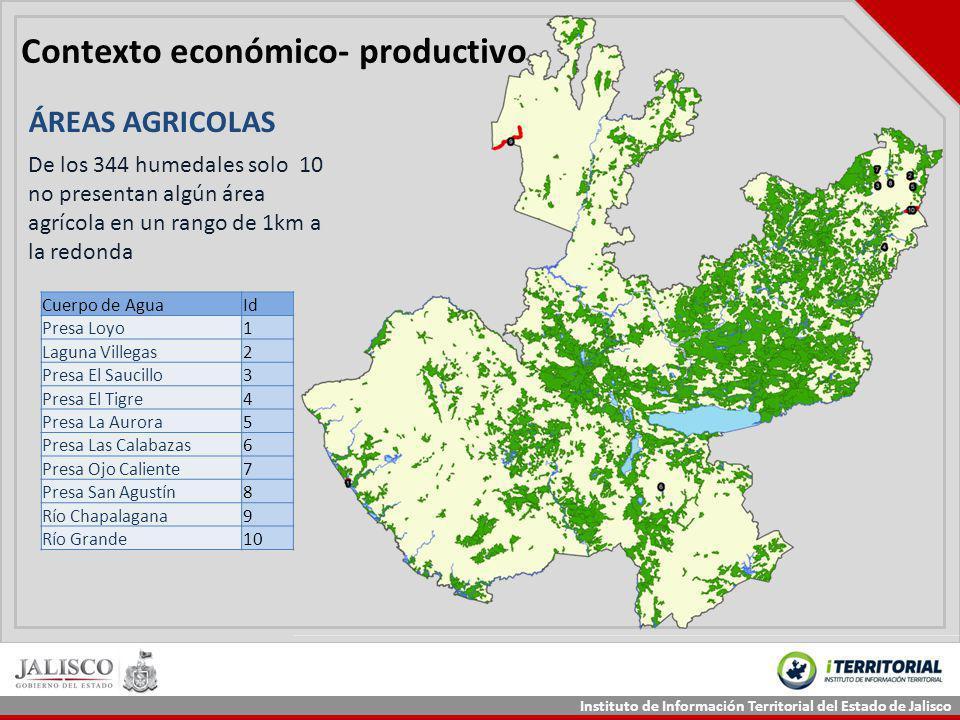 Contexto económico- productivo