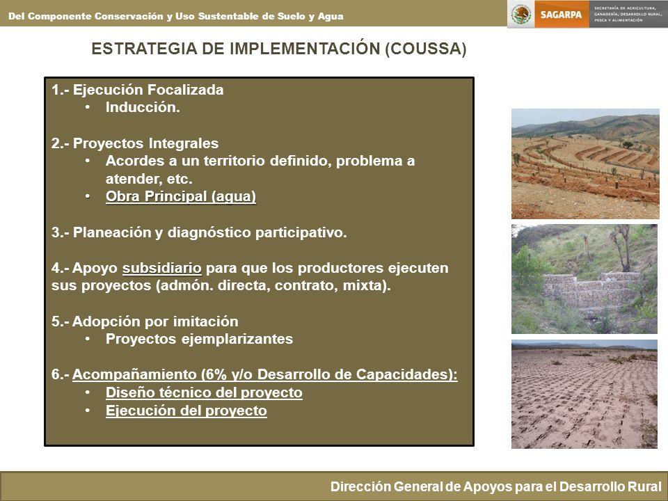 ESTRATEGIA DE IMPLEMENTACIÓN (COUSSA)