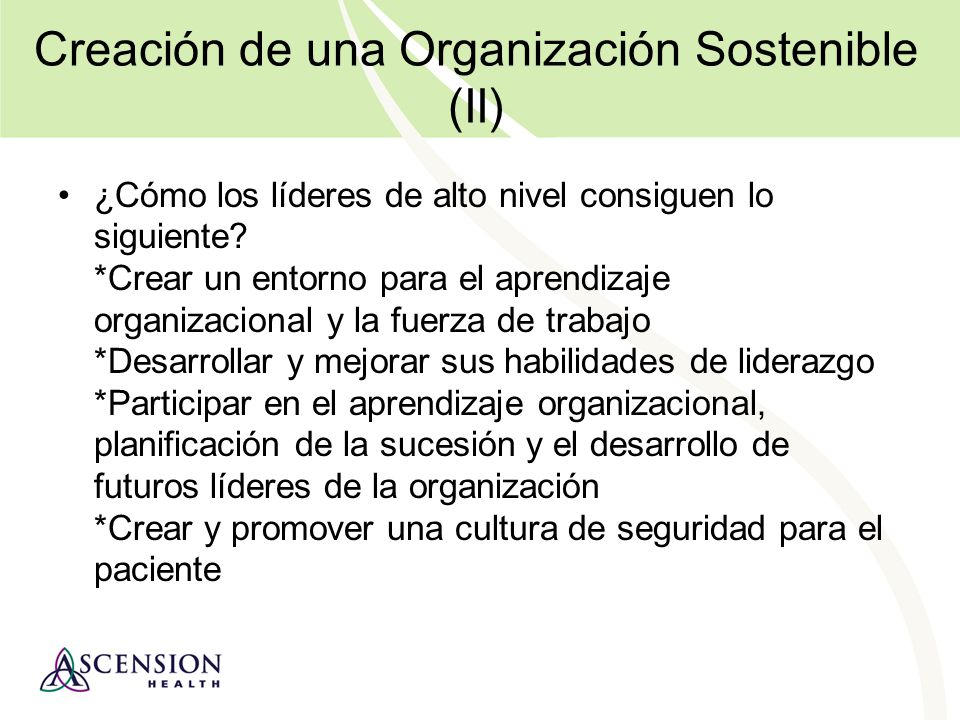 Creación de una Organización Sostenible (II)