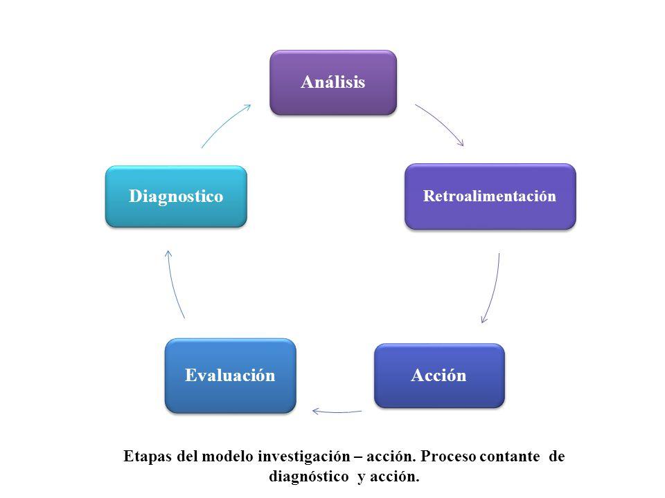 Análisis Acción Evaluación Diagnostico