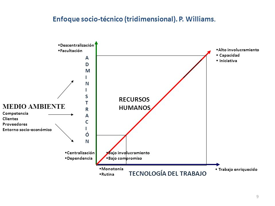 Enfoque socio-técnico (tridimensional). P. Williams.