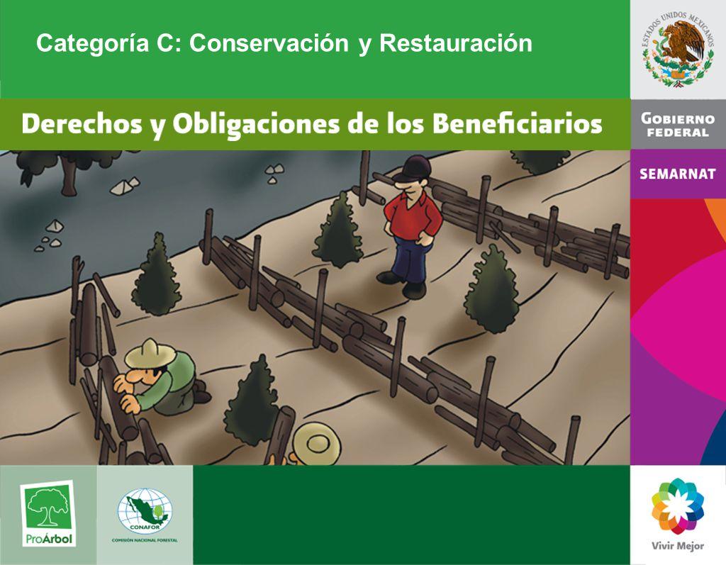 Categoría C: Conservación y Restauración