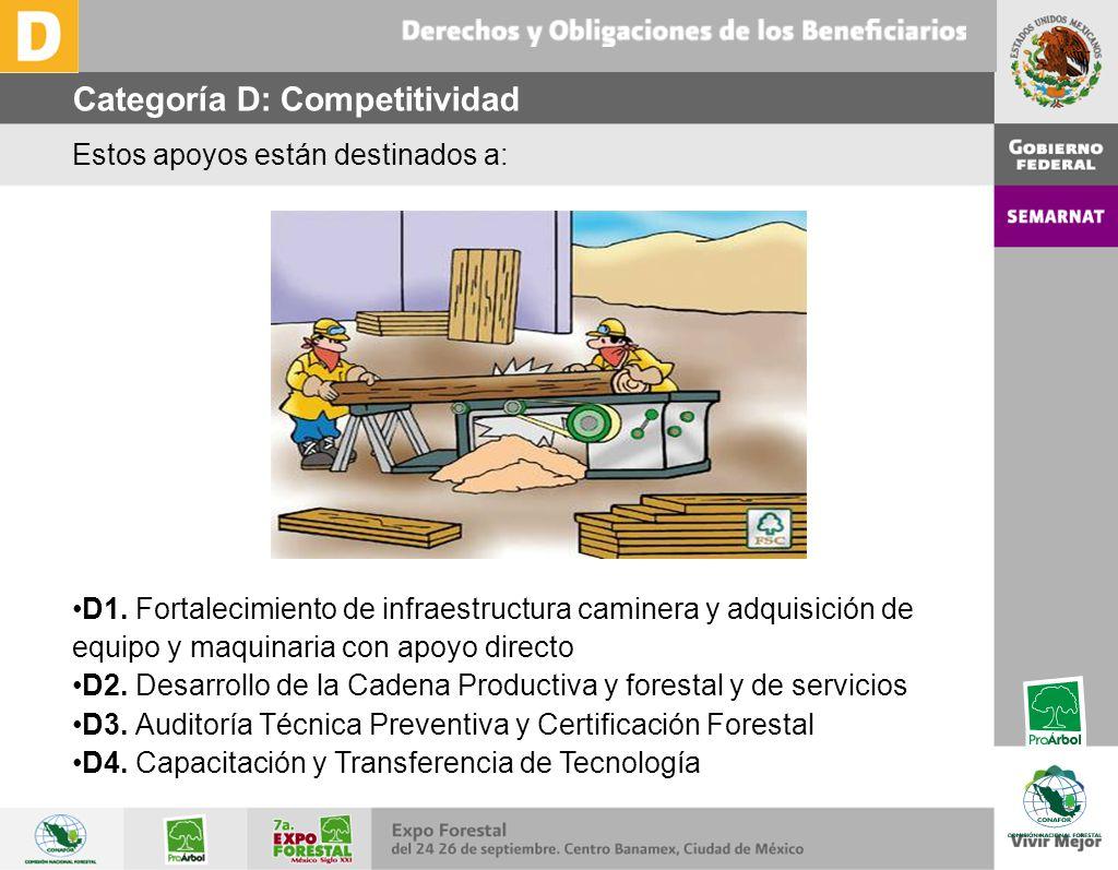 Categoría D: Competitividad
