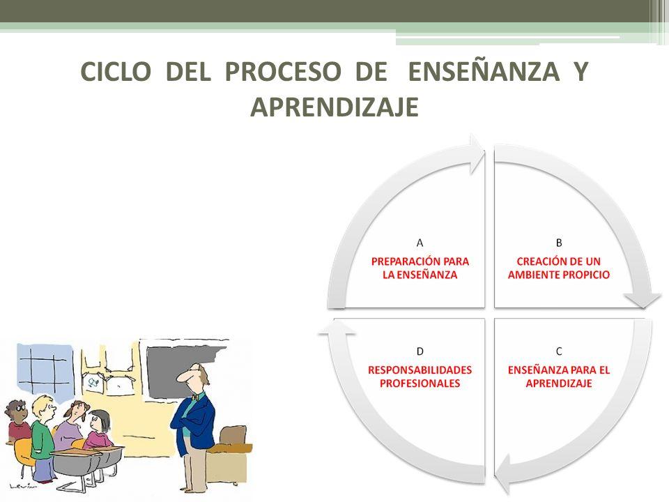 CICLO DEL PROCESO DE ENSEÑANZA Y APRENDIZAJE