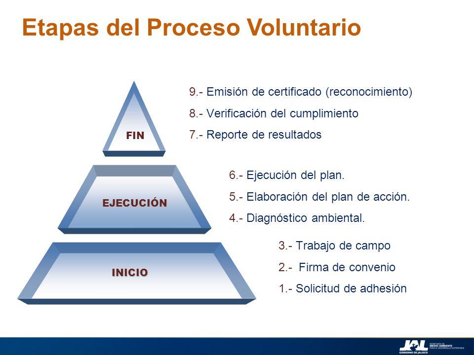 Etapas del Proceso Voluntario