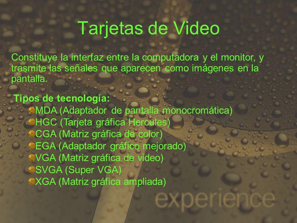 Tarjetas de Video Constituye la interfaz entre la computadora y el monitor, y trasmite las señales que aparecen como imágenes en la pantalla.