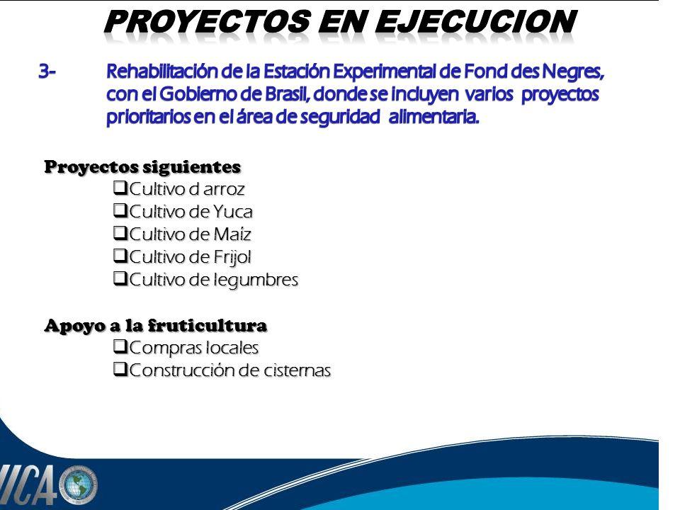 PROYECTOS EN EJECUCION