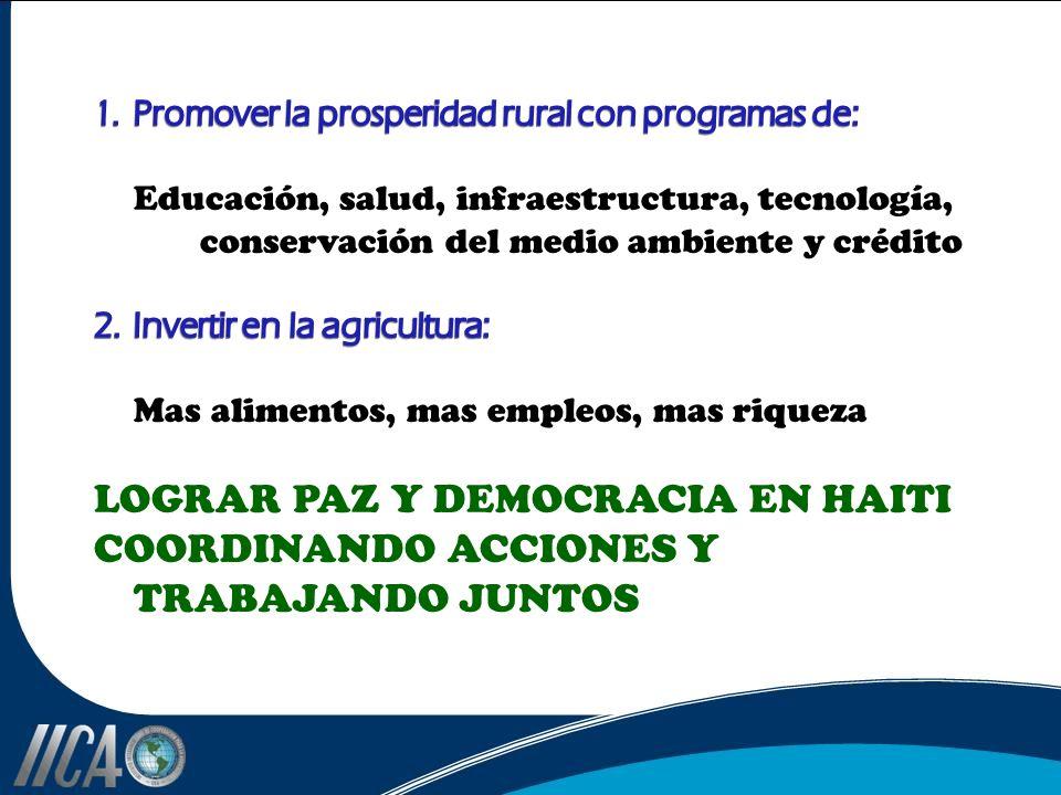 LOGRAR PAZ Y DEMOCRACIA EN HAITI