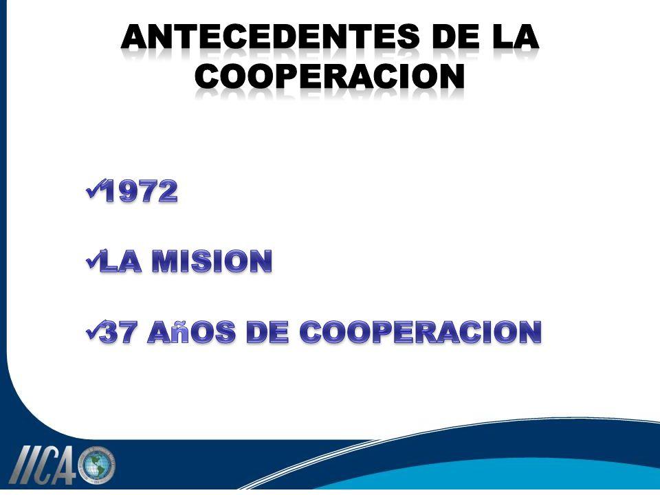 ANTECEDENTES DE LA COOPERACION
