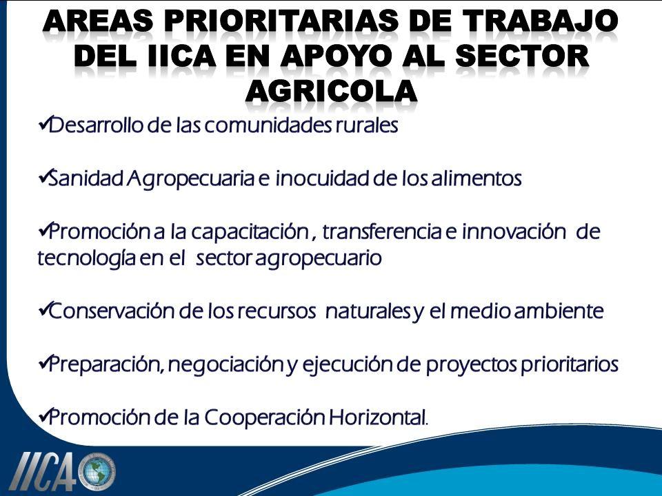 AREAS PRIORITARIAS DE TRABAJO DEL IICA EN APOYO AL SECTOR AGRICOLA