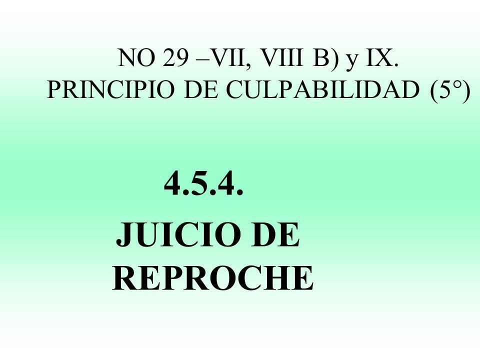 NO 29 –VII, VIII B) y IX. PRINCIPIO DE CULPABILIDAD (5°)