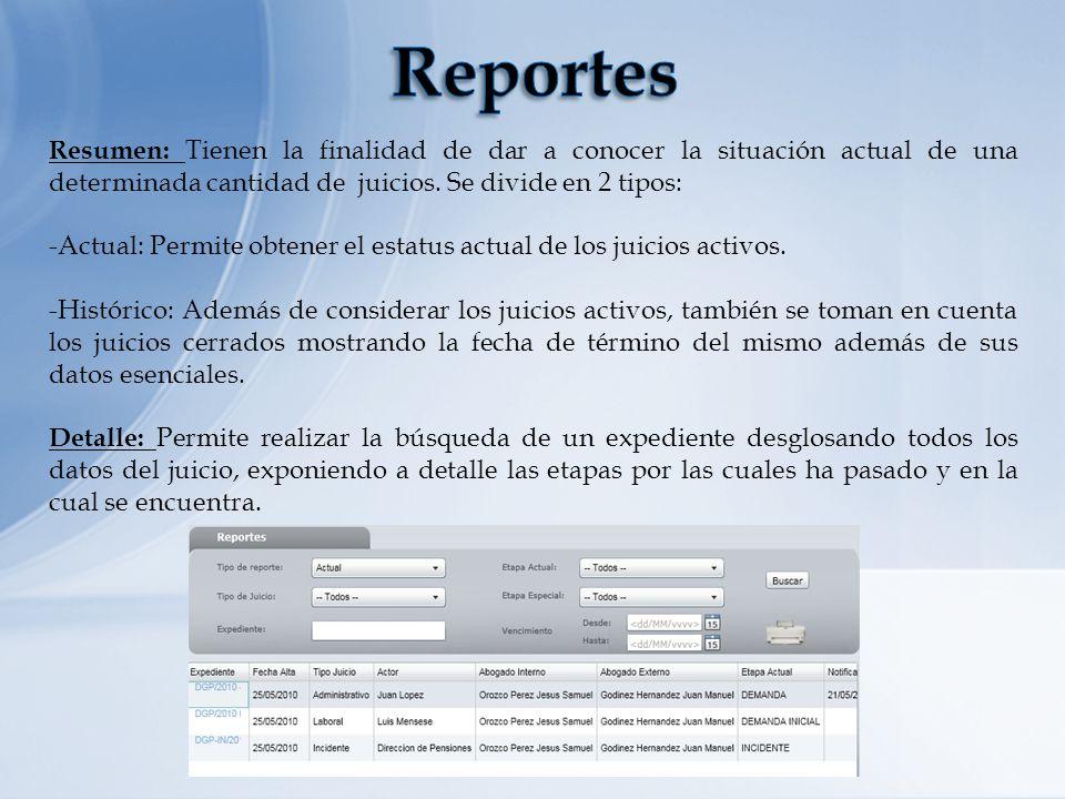 Reportes Resumen: Tienen la finalidad de dar a conocer la situación actual de una determinada cantidad de juicios. Se divide en 2 tipos: