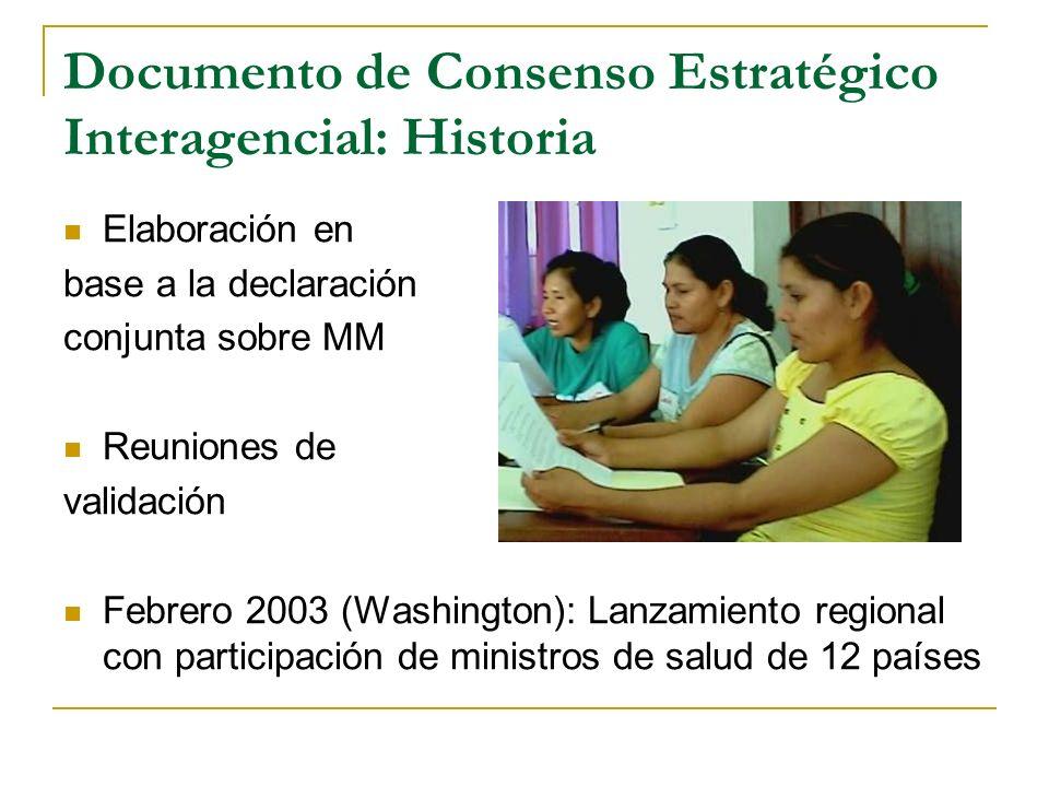 Documento de Consenso Estratégico Interagencial: Historia