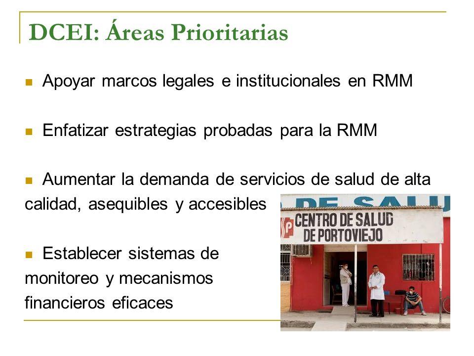 DCEI: Áreas Prioritarias