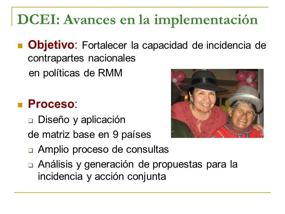 DCEI: Avances en la implementación
