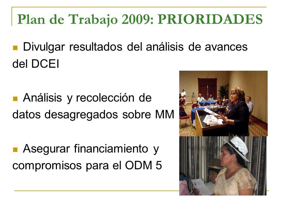 Plan de Trabajo 2009: PRIORIDADES