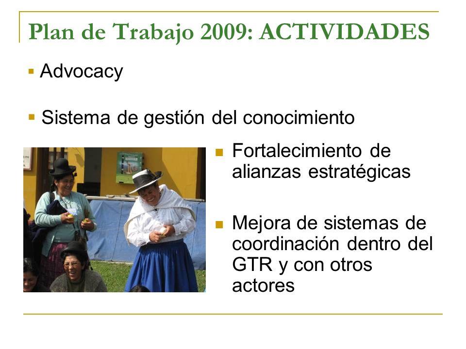 Plan de Trabajo 2009: ACTIVIDADES