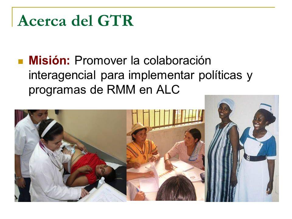 Acerca del GTR Misión: Promover la colaboración interagencial para implementar políticas y programas de RMM en ALC.