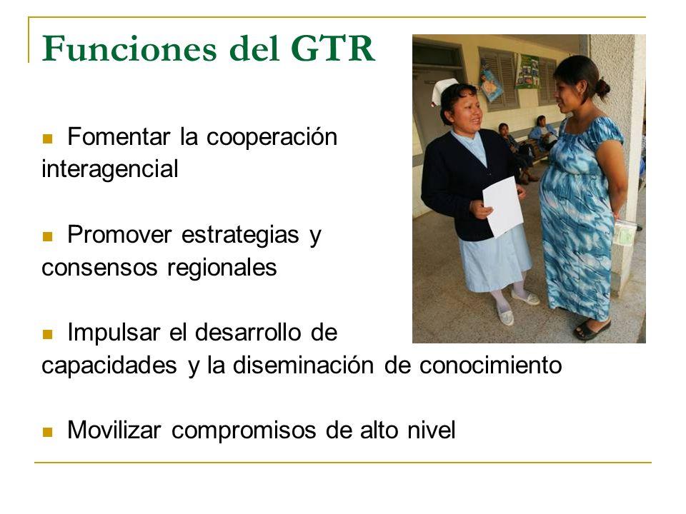 Funciones del GTR Fomentar la cooperación interagencial