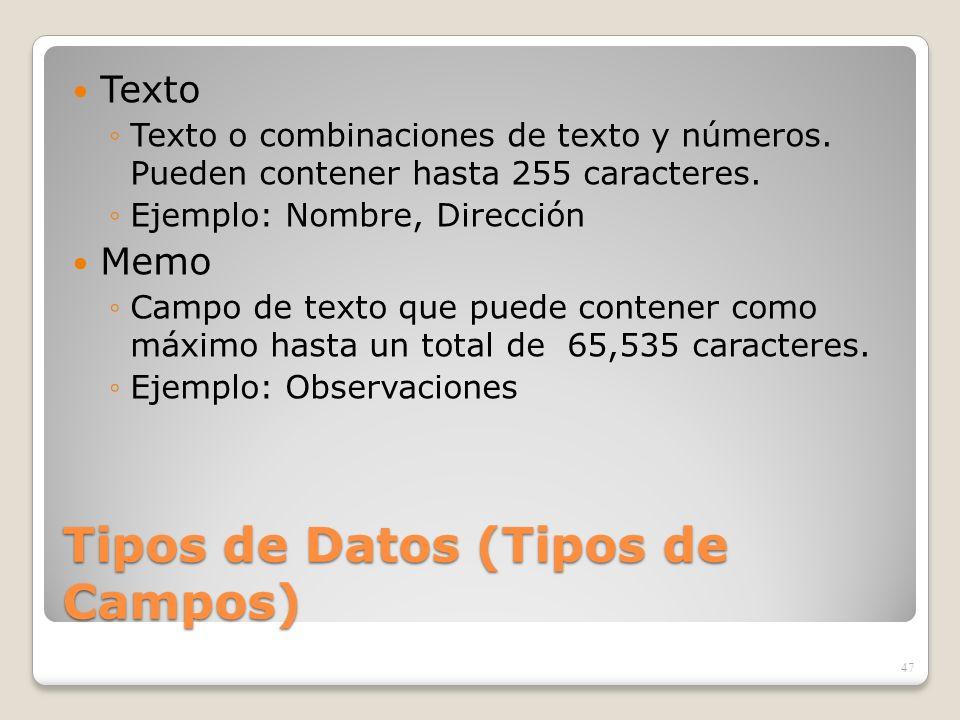 Tipos de Datos (Tipos de Campos)
