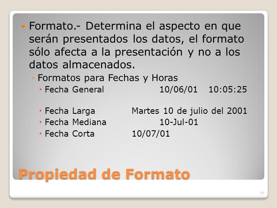 Formato.- Determina el aspecto en que serán presentados los datos, el formato sólo afecta a la presentación y no a los datos almacenados.