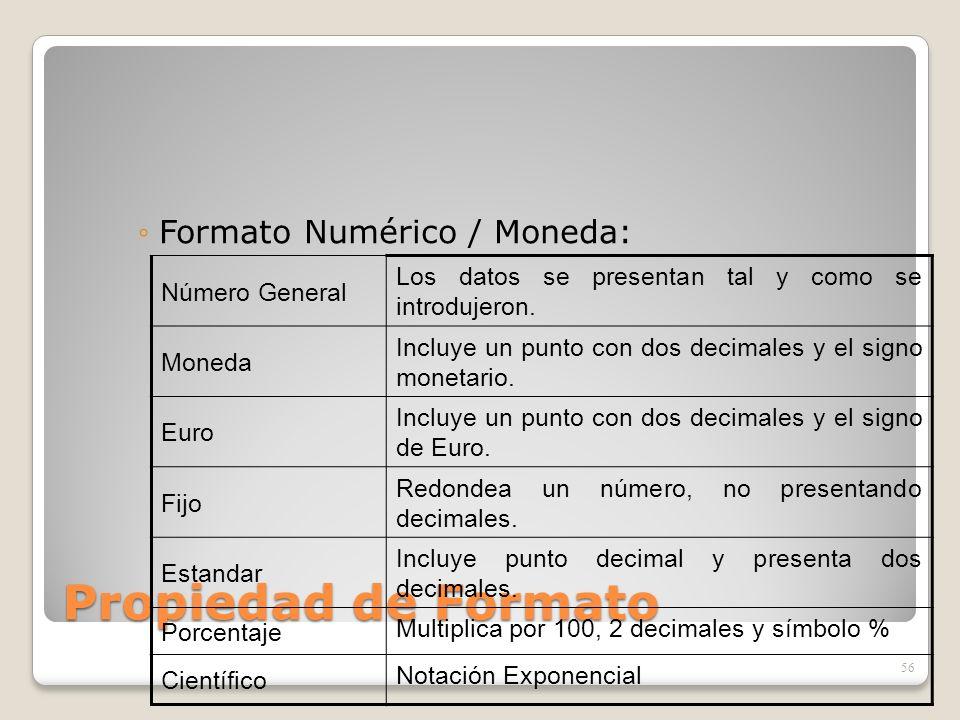 Propiedad de Formato Formato Numérico / Moneda: Número General