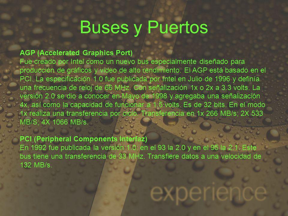 Buses y Puertos