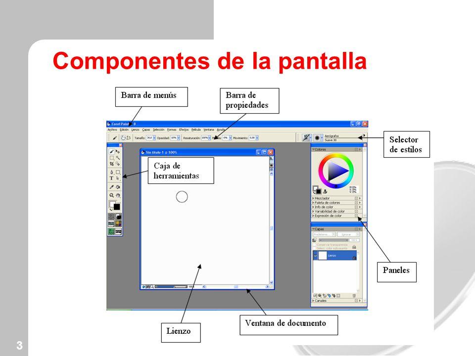 Componentes de la pantalla