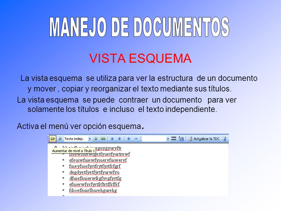 MANEJO DE DOCUMENTOS VISTA ESQUEMA