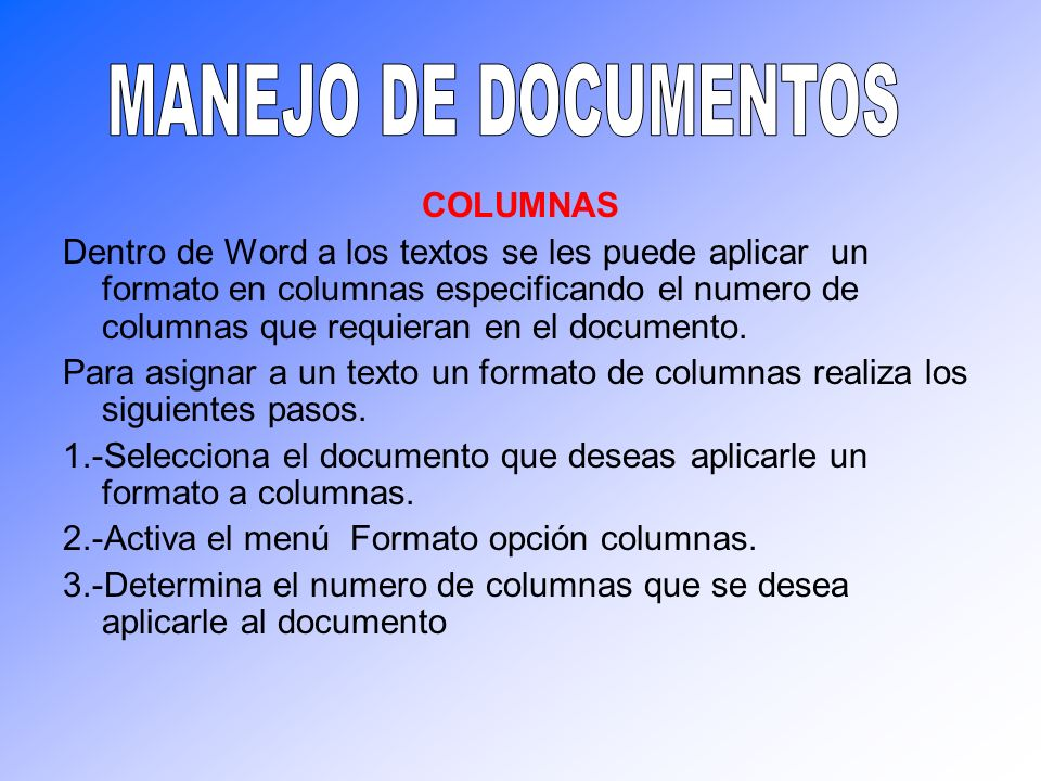 MANEJO DE DOCUMENTOS COLUMNAS