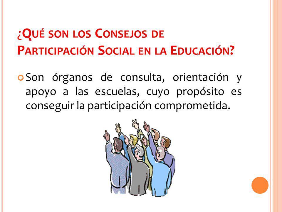 ¿Qué son los Consejos de Participación Social en la Educación