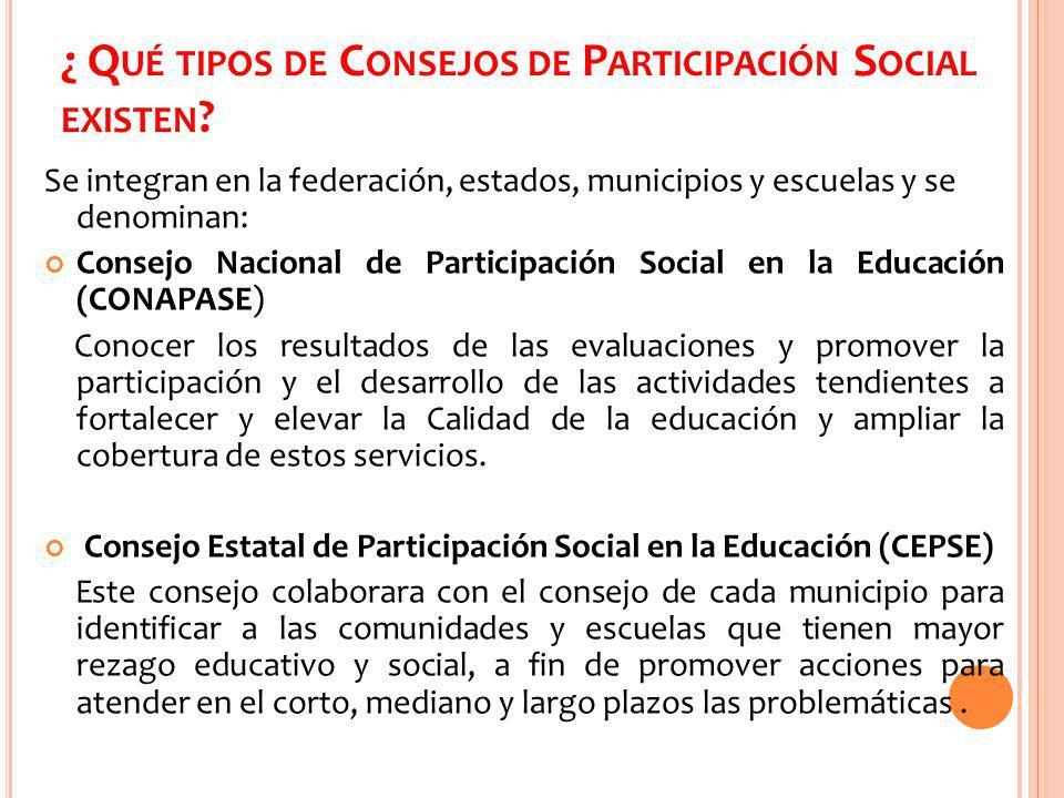 ¿ Qué tipos de Consejos de Participación Social existen
