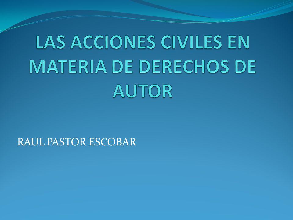 LAS ACCIONES CIVILES EN MATERIA DE DERECHOS DE AUTOR