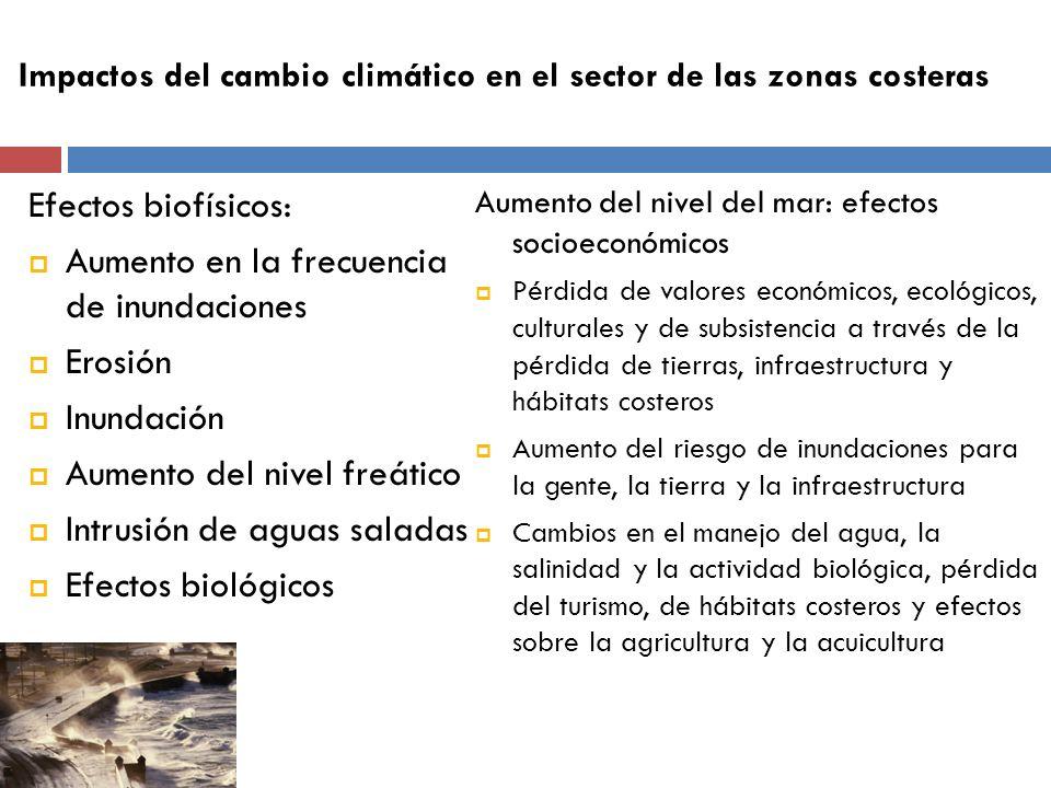 Impactos del cambio climático en el sector de las zonas costeras