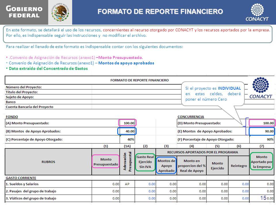 FORMATO DE REPORTE FINANCIERO