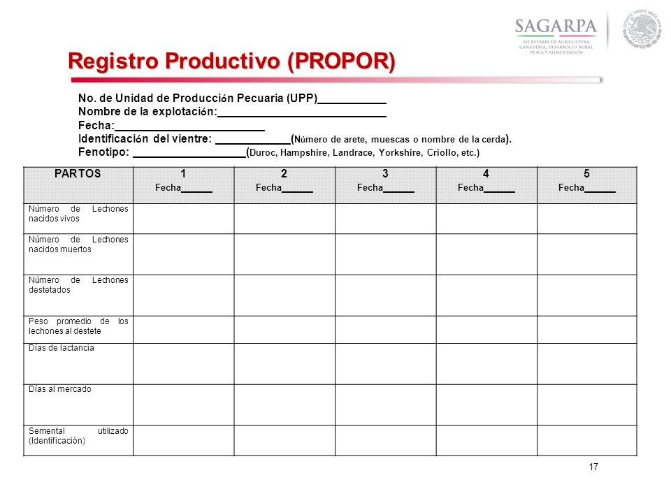 Registro Productivo (PROPOR)