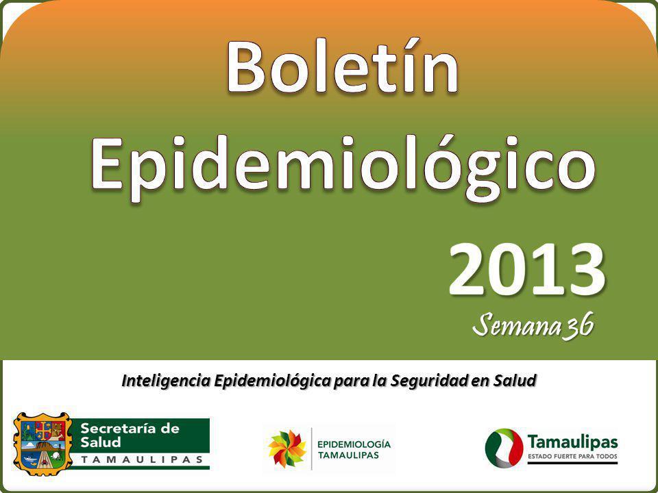 Boletín Epidemiológico 2013