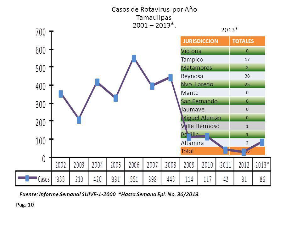 Casos de Rotavirus por Año
