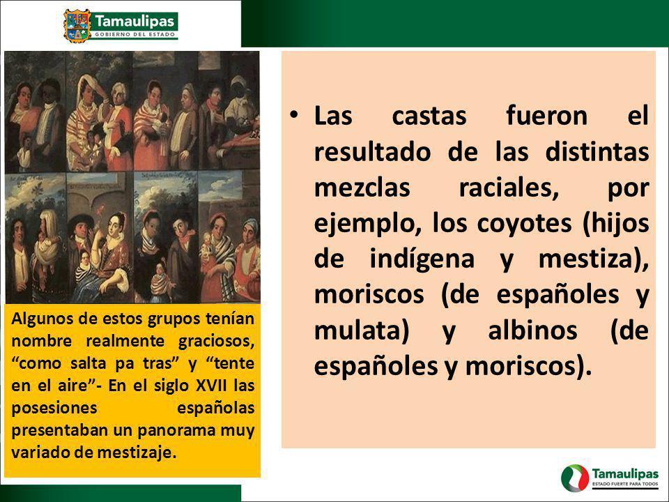 Las castas fueron el resultado de las distintas mezclas raciales, por ejemplo, los coyotes (hijos de indígena y mestiza), moriscos (de españoles y mulata) y albinos (de españoles y moriscos).