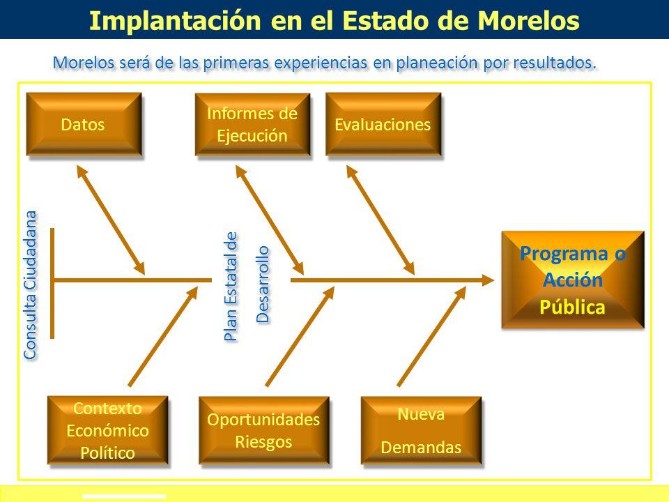 Implantación en el Estado de Morelos Programa o Acción Pública
